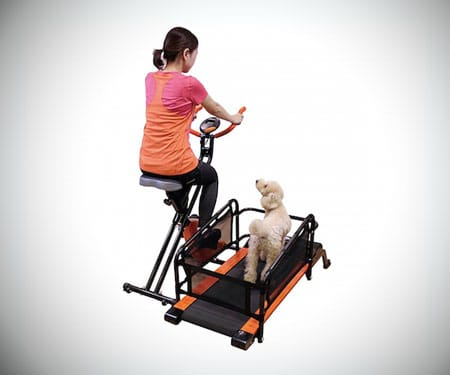 Dual Dog Exercise Treadmill