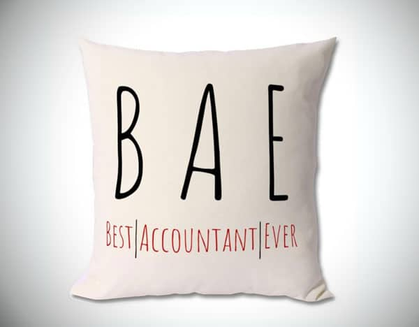 BAE, Best Accountant Ever Cushion