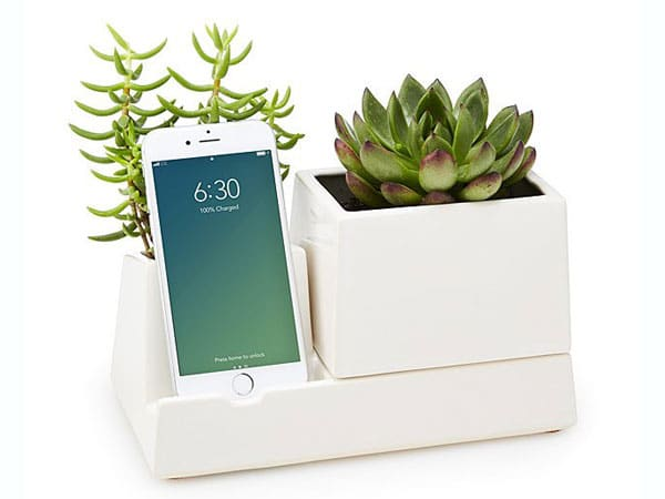 Smartphone Valet & Planter - Inexpensive Gifts for Co-Workers