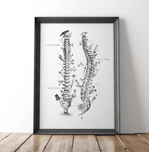 Chiropractic Wall Art