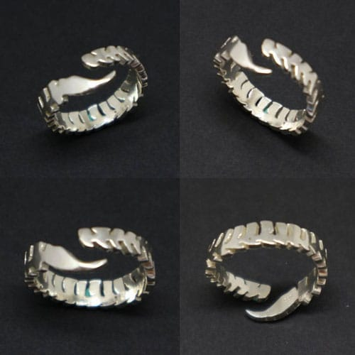 Silver Spine Cord Anatomy Ring