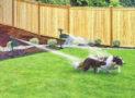 Motion Activated Solar Powered Sprinkler Repeller