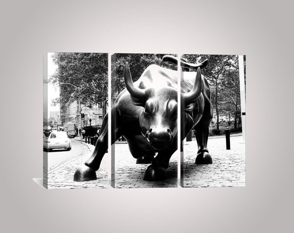 Political Wall Street Bull 3 Piece Photographic Print