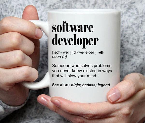 Software Developer, Engineer Gift Mug - Gifts For Programmer Boyfriend