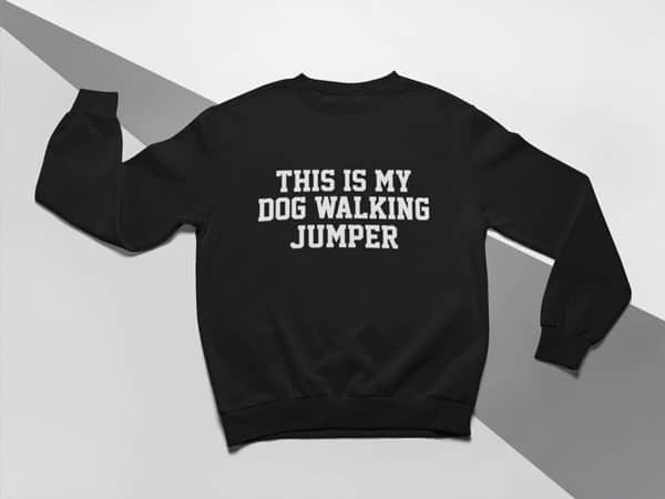 This Is My Dog Walking Jumper