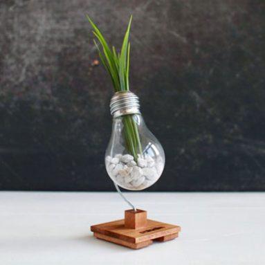 Anti-Stress BETA Bulb
