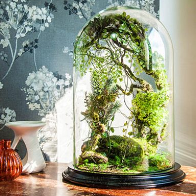 Artificial Plant Forest Terrariums
