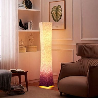 CHIPHY Dimmable Decorative Floor Lamps