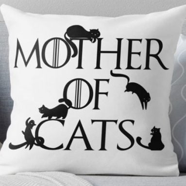 40 Cool & Unique Gifts For Cat Lovers And There Feline Friends