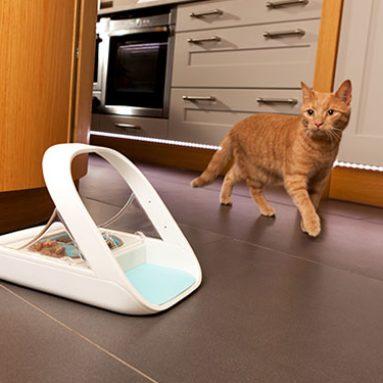 Microchip Smart Pet Feeder