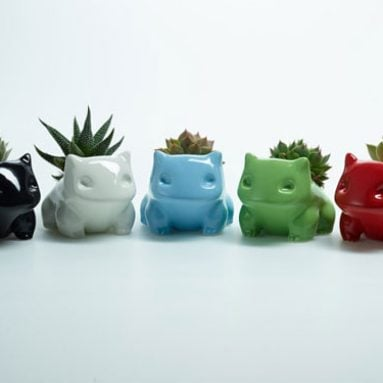 Mini Monster Succulent Pots