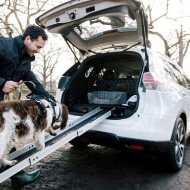 Nissan X-Trail 4Dogs Concept Car