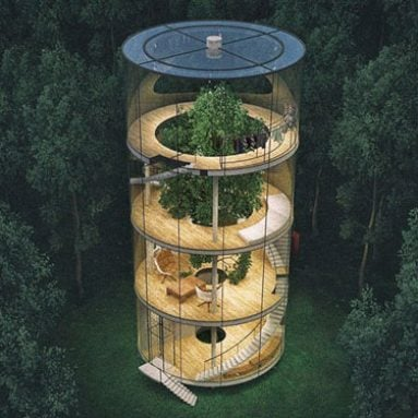 Tubular Glass Tree House