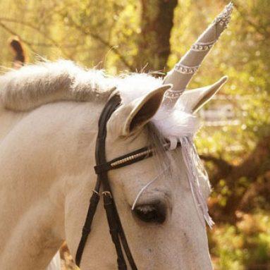 Unicorn Horse Costume