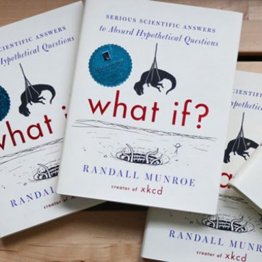 What-If Book