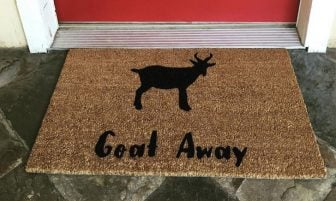 50 Of The Funniest Doormats To Greet Your Guests!