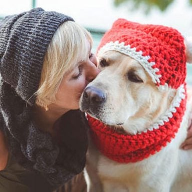 31 Cool Dog Hats For Dogs Of All Shapes And Sizes!
