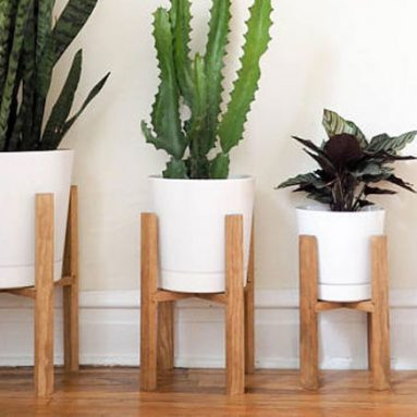 50 Best Indoor Plant Stands For All Plants